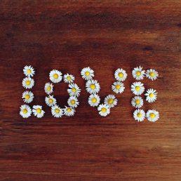 Liebe Beziehung Freundschaft Profilbild für WhatsApp Blumen