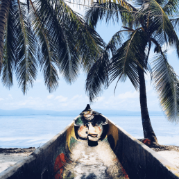 strand-sommer-palmen-profilbild